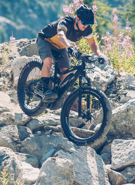 e-MTB Fat-Bike
