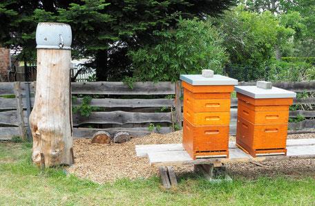 Bienenstöcke auf dem Komturhof