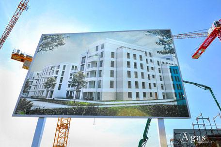 So Berlin Neubauprojekt Brunnenviertel Agas Immobilien