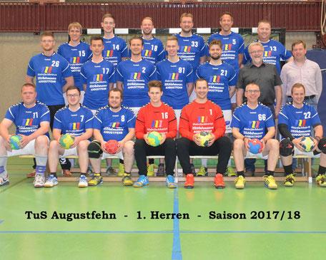 Handball Mannschaft 1. Herren vom TUS Augustfehn