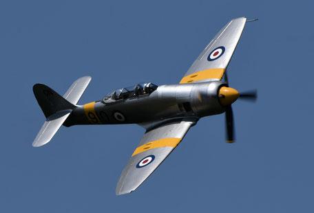 Sea Fury T20