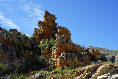 /Tradouws Pass/Karoo/Langeberg Mountains/Route 62/