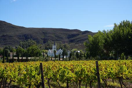 Weingut, Stellenbosch, Südafrika, African Top Tours