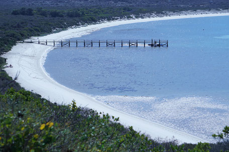 Westküste/West Coast Natinal Park/Kapstadt/Südafrika