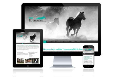 Tierarzt Pferde Osteotherapeut TOS Grommes Grafikdesign Katja Beter Webdesign