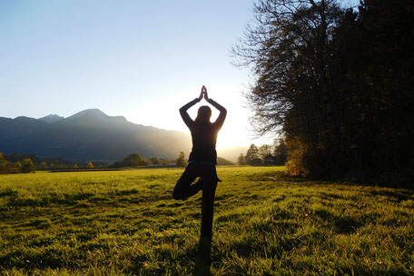 Verena Frank Yoga Baum Lans