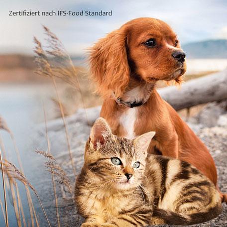 gesunde Hundesnacks, gesunde katzensnacks, Leckerlis, snacks für hunde ohne Zucker,  snacks für katzen ohne zucker, gesunde leckerlis