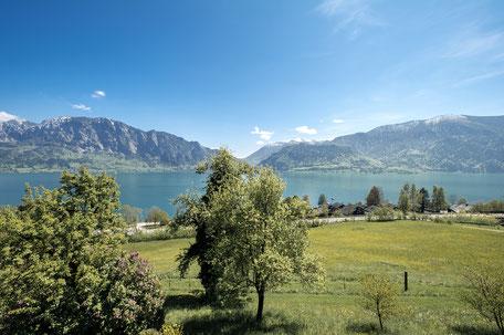 Attersee Seeblick Ferienwohnungen Scheichl