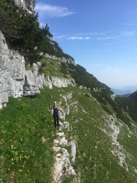 Hohe Schrott, Bad Ischl, Salzkammergut, Frühling, Wanderurlaub, Wandern, Geführte Wanderung, Sonnenaufgangstour, Hike & Nature