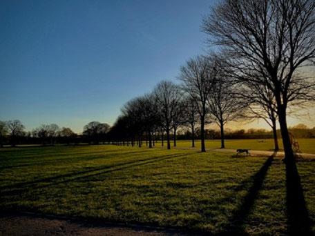 イギリスには、歩く人のための道「フットパス」が国中に張り巡らされ、実に多くの人が歩いています。  ウェールズに留学中、家から大学までの20分間、森や公園だけを通って通えました。