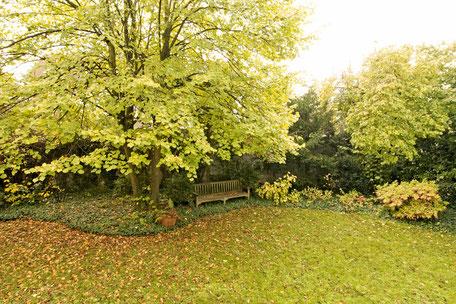 Heidelberg vollmöblierte Wohnung - Garten