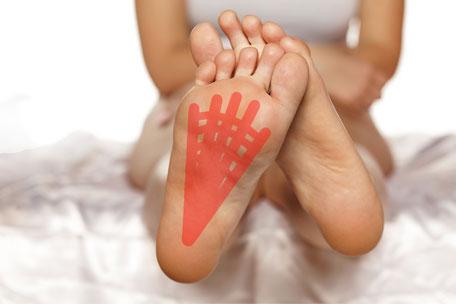 足底腱膜のイメージ