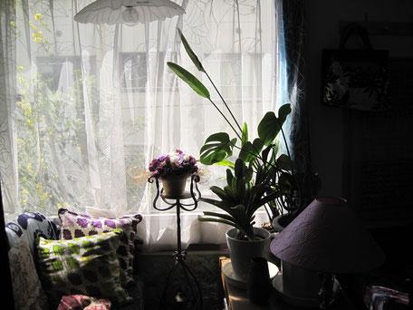 くつろぎのプライベートルーム・自分だけの部屋