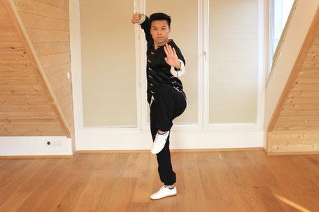 Kung Fu Schule Studio Zhang Wien