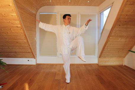 Tai Ji Studio Zhang Wien