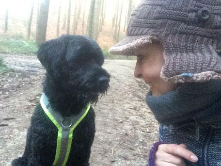 Nähe suchen und Körperkontakt von Kurt wird - vor allem draußen - neben vielen anderen Verhalten, kräftig verstärkt, durch Aufmerksamkeit, Zuwendung, Futter und Anfassen, damit der Hund eher mal dieses Verhalten zeigt, statt Fährten im Wald nachzugehen.