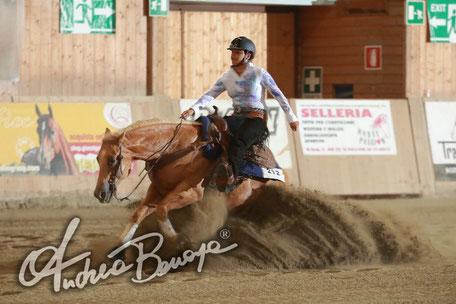 Buccini Girogia - Int./Ltd./Non Pro