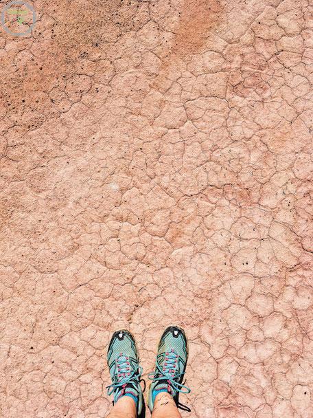 Unterwegs an einsamen Plätzen in der Wüste