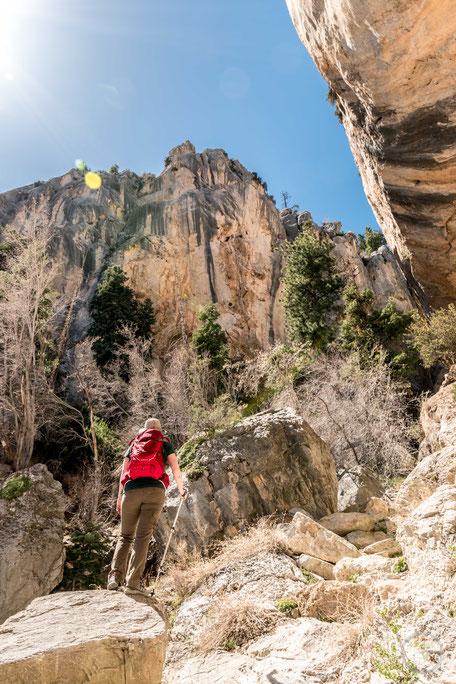 Spring Mountains Mount Charleston Recreation Nevada Las Vegas Sin City hiking wandern Natur hikelust Berge