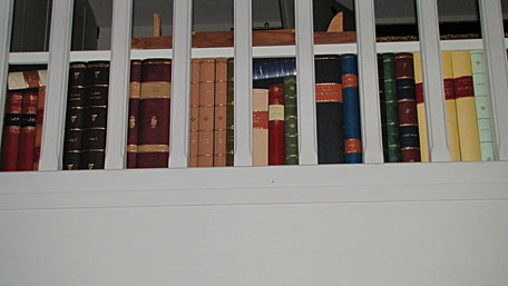 private house leather faux books
