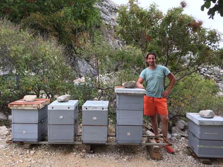 Bienenstand in Kroatien