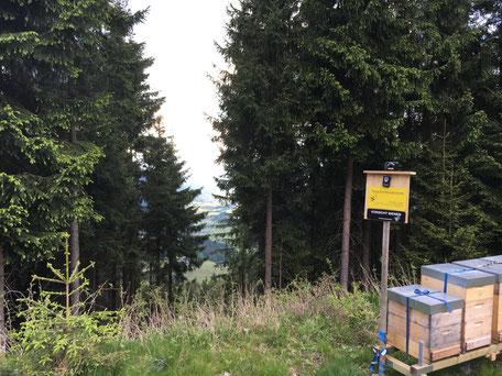 Bienenstand Wald