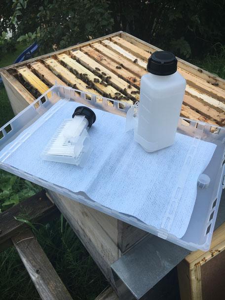 Ameisensäurebehandlung