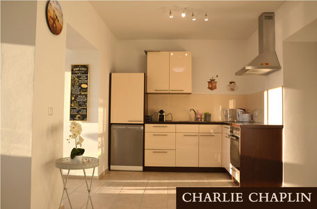 Charlie Chaplin - 120m² Pöstlingberg Apartment
