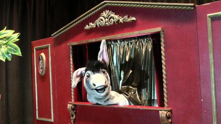 Spectacle de marionnettes pour les écoles, les crèches, les relais d'assistantes maternelles, théâtre, bibliotheque, ludotheque, centre de loisirs
