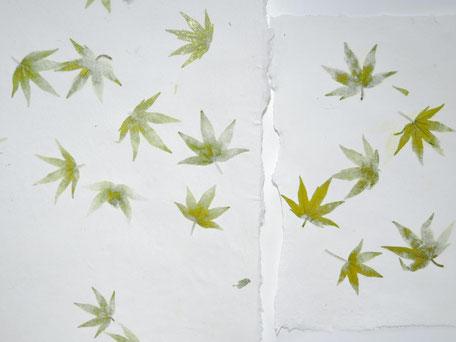 Amberbaum Büttenpapier A4 und A5 - Detail