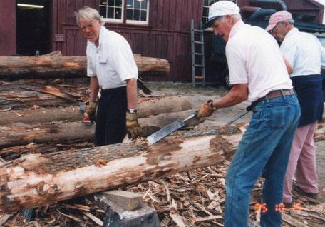 切り倒して乾燥したままの大きな材木の皮を剥ぐボランティア