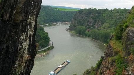 Blick ins Rheintal / Rheindurchbruchstal