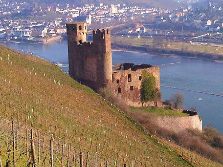 Burg Ehrenfels am Rhein