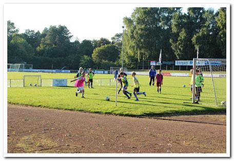 Pressing und Gegenpressing im und mit dem Soccer-Ei trainiert