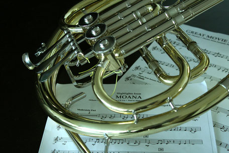 Horn mit Ensemble-Noten (Foto: MBO)