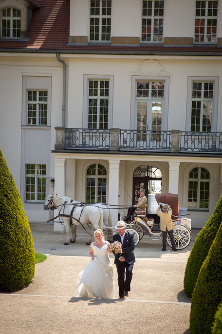 Hochzeit Schloss Wackerarth, Hochzeitsfotograf Radebeul, Hochzeitsfotos Schloss Wackerbarth, Heiraten Schloss Wackerbarth, Hochzeit Wackerbarth Radebeul, Heiraten auf Schloss Wackerbarth, Hochzeitsfotografin Radebeul, Hochzeitsfotos Radebeul