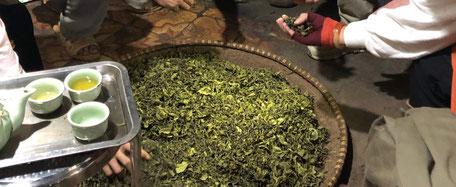 Maison Émile Auté - Histoire d'une nouvelle vie de planteur de thé en Loir-et-Cher France