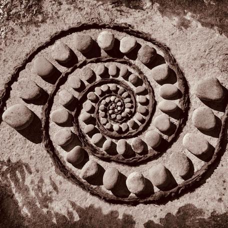 www.ronaldosephius.nl nautilus kleine stenen zand Fibonacci Gulden Snede Bewust Groeien vanuit innerlijke kracht
