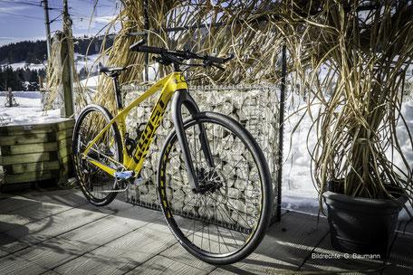 Ghost Lector Starrbike Carbon Gabel Bildrechte G Baumann