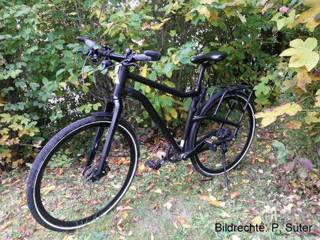 Carbon Gabel Trekking Bike Bildrechte P Suter