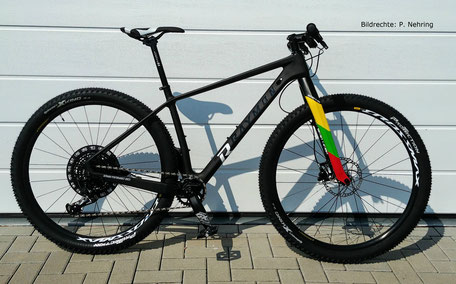 Raymon Carbon Hardtail Nineray 9.0 mit Lightcarbon Carbon Gabel 475mm Bildrechte P Nehring 2