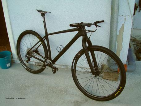 Carbon Gabel Starrbike Bildrechte S Kaswurm
