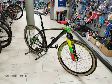 Haibike Carbon Gabel Starrbike Lightcarbon Gabel Bildrechte T Nikolai