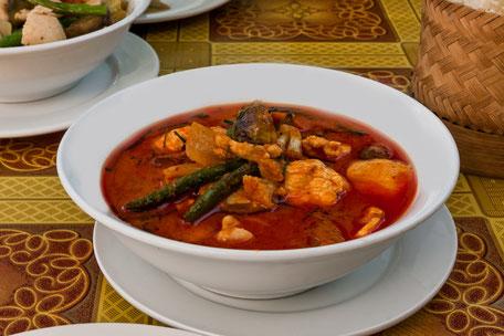 Thailändisches-Red-Chicken-Curry-Rotes Hühnercurry-lizensfrei