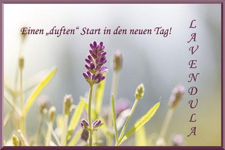 guten-morgen-grusskarte-lavendel-lavendula-bluete-dufter-tag