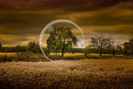 Glaskugel vor Bäumen im Getreidefeld