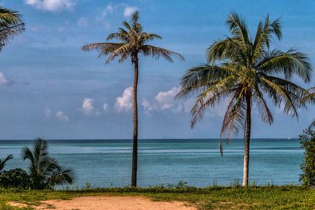 blick-auf-palmen-und-meer-wok-tum-koh-phangan