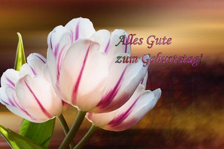 geburtstag-grusskarte-alles-gute-tulpen