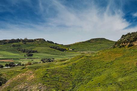 gozo-gruene-huegelige-landschaft