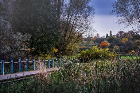 bunter-herbst-naturweg